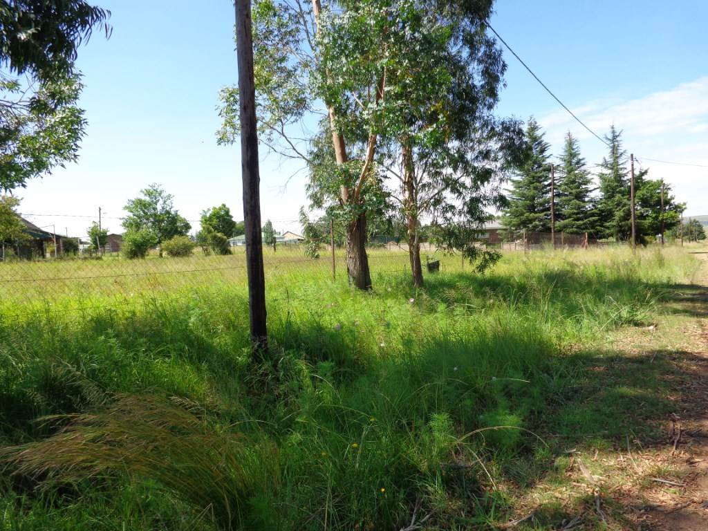 Vacant Land Commercial For Sale In Memel