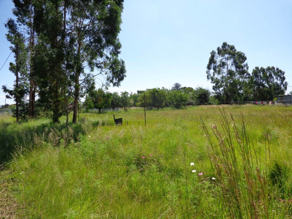 Vacant Land Residential For Sale In Memel