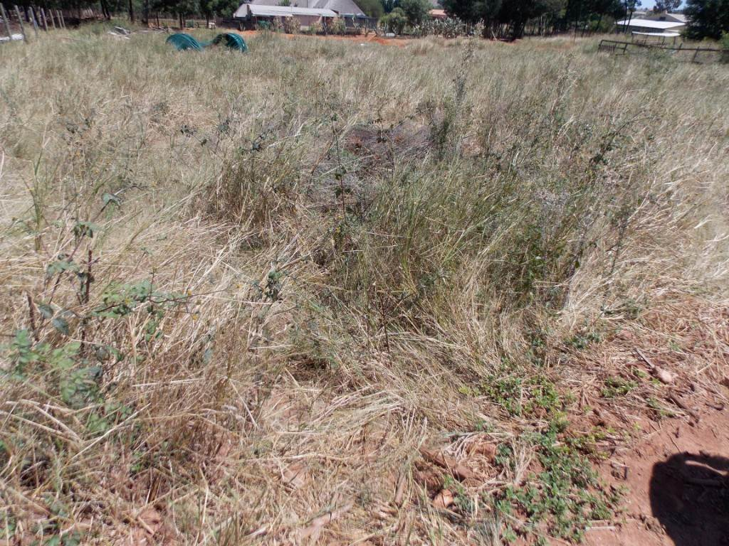 Grootfontein Country Estate property for sale. Ref No: 13534594. Picture no 5