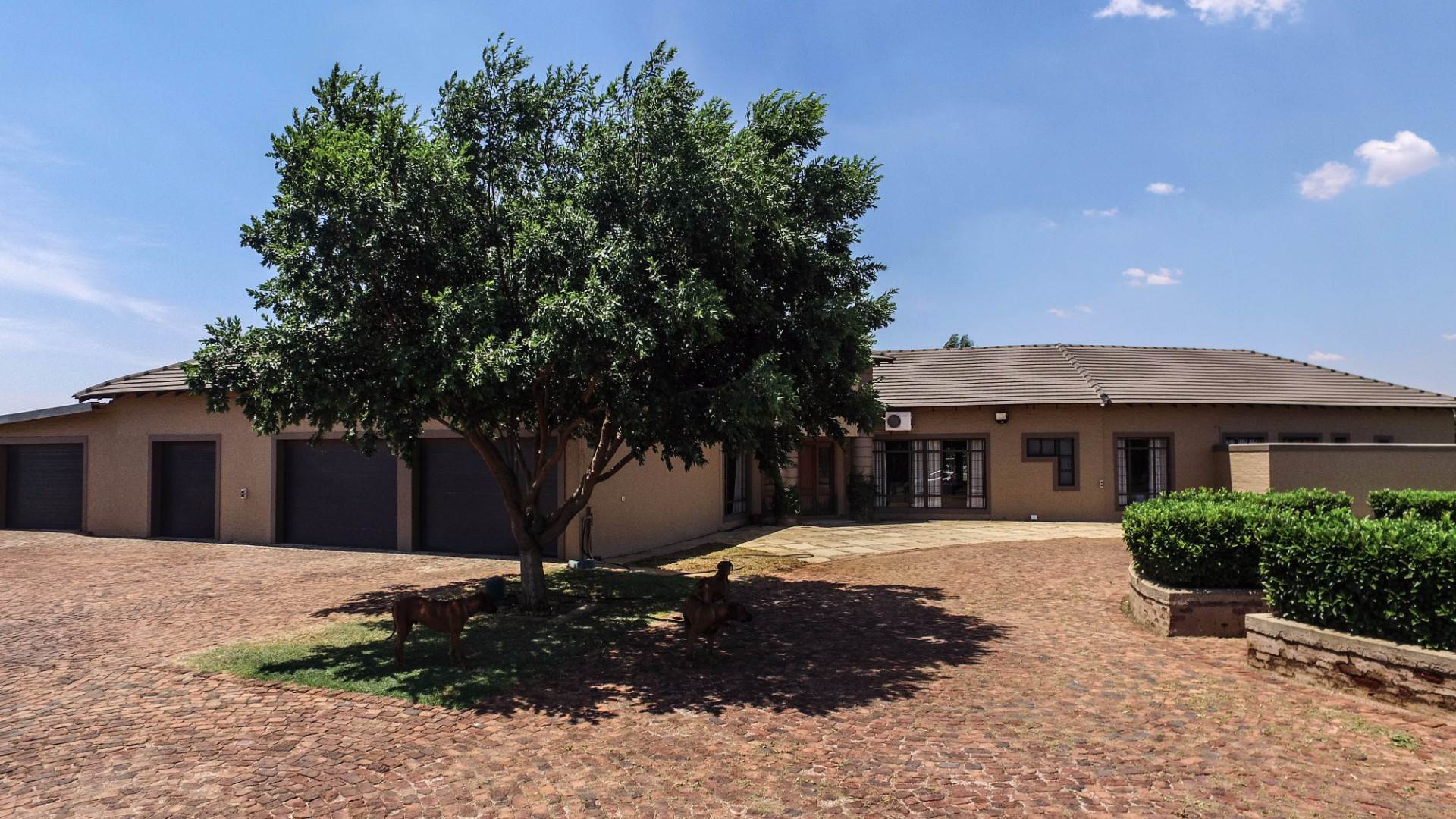 5 BedroomHouse For Sale In Modder East Orchards Ah