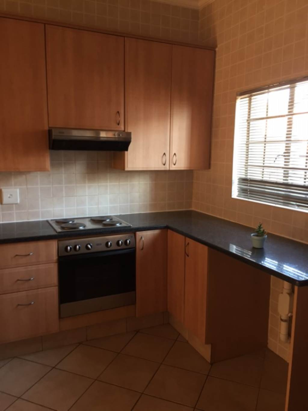 The Wilds property to rent. Ref No: 13534802. Picture no 4