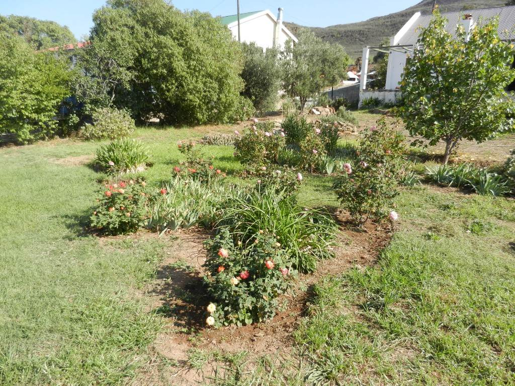 Barrydale property for sale. Ref No: 13479762. Picture no 26