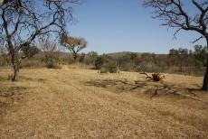 Farm for sale in Vaalwater 1004359 : photo#2