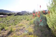 Vacant Land Residential for sale in Pringle Bay 1006094 : photo#0