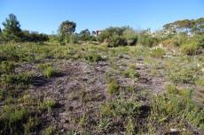 Vacant Land Residential for sale in Pringle Bay 1006094 : photo#10