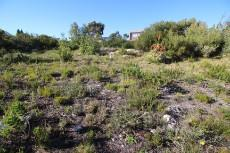 Vacant Land Residential for sale in Pringle Bay 1006094 : photo#11