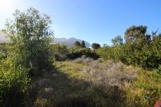 Vacant Land Residential for sale in Pringle Bay 1006094 : photo#9