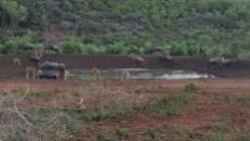 Farm for sale in Thabazimbi 1010288 : photo#10