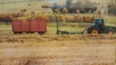 4 Bedroom Farm for sale in Malmesbury 1010933 : photo#21