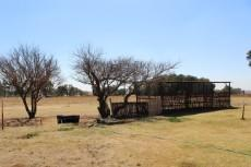 5 Bedroom House for sale in Delmas 1028763 : photo#22