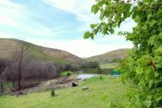 4 Bedroom Farm for sale in Mossel Bay 1038250 : photo#9