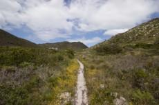Vacant Land Residential for sale in Pringle Bay 1040296 : photo#4