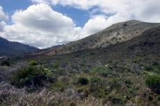 Vacant Land Residential for sale in Pringle Bay 1040296 : photo#0