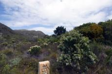 Vacant Land Residential for sale in Pringle Bay 1040296 : photo#6