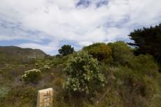 Vacant Land Residential for sale in Pringle Bay 1040296 : photo#1
