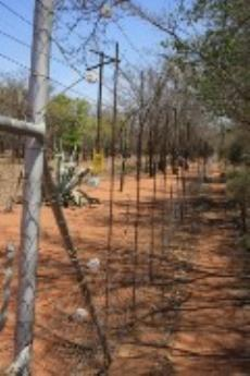 Farm for sale in Vaalwater 1043806 : photo#23
