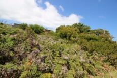 Vacant Land Residential for sale in Pringle Bay 1061201 : photo#2