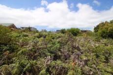 Vacant Land Residential for sale in Pringle Bay 1061201 : photo#1