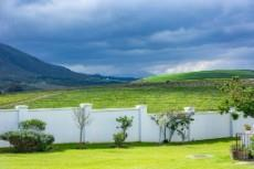 View out over the neighbouring wine farm