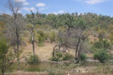 Other photos of the reserve