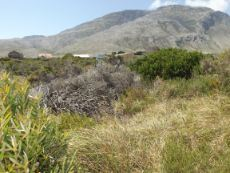 Extra large plot for sale in Bettys Bay,