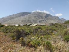Large plot in Bettys Bay.