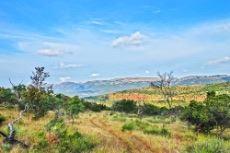 Farm vistas