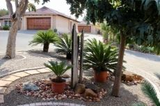 Waterwise garden (pot plants excluded from sale)