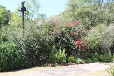 13 Bedroom Small Holding for sale in Waterval Boven 539464 : photo#8