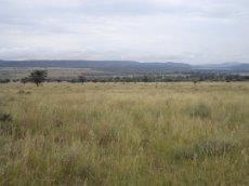 3 Bedroom Farm for sale in Nylstroom 569218 : photo#100