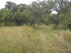 3 Bedroom Farm for sale in Nylstroom 569218 : photo#80