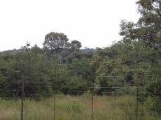 3 Bedroom Farm for sale in Nylstroom 569218 : photo#78