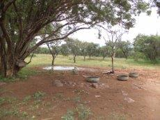3 Bedroom Farm for sale in Nylstroom 569218 : photo#101
