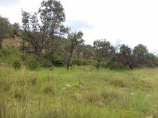 3 Bedroom Farm for sale in Nylstroom 569218 : photo#75