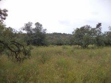 3 Bedroom Farm for sale in Nylstroom 569218 : photo#82