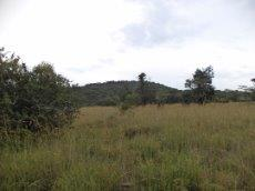 3 Bedroom Farm for sale in Nylstroom 569218 : photo#68