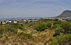 Vacant Land Residential for sale in Pringle Bay 721979 : photo#22