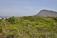 Vacant Land Residential for sale in Pringle Bay 721979 : photo#5