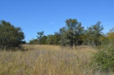 4 Bedroom Farm for sale in Vaalwater 767302 : photo#11
