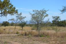 4 Bedroom Farm for sale in Vaalwater 767302 : photo#14