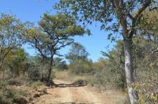 4 Bedroom Farm for sale in Vaalwater 767302 : photo#10