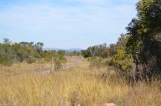 4 Bedroom Farm for sale in Vaalwater 767302 : photo#51