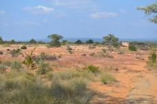 3 Bedroom Farm for sale in Vaalwater 768606 : photo#13