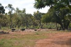 3 Bedroom Farm for sale in Vaalwater 768606 : photo#9