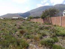One side of vacant plot boundary wall