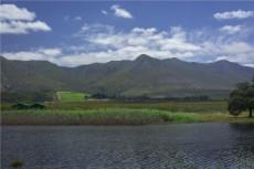 Looking North across the river towards a wine estate against the mountain