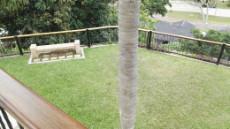 5 Bedroom House sold in La Lucia Ridge 962466 : photo#8
