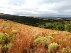 3 Bedroom Farm for sale in Nylstroom 965188 : photo#23