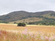 3 Bedroom Farm for sale in Nylstroom 965188 : photo#3