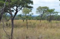 Small Holding for sale in Waterberg 980382 : photo#24